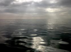 water-copy