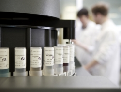 laboratories testing sample with men in white lab coats-Industrial photographs