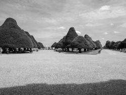 Hampton palace garden - Ross Vincent Photography