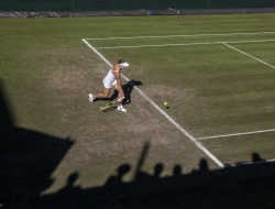 Wimbledon-Tennis - Ross Vincent Photography
