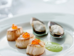 scallops for WP