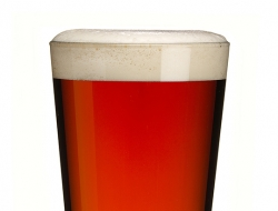 Wye Valley-Hopfarther pint