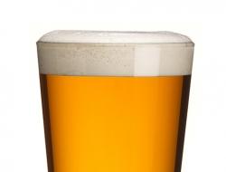 Wye valley-Golden Bitter pint