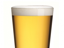 Wye valley-HPA pint